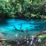 Emerald Pool - Krabi
